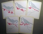 Spring Birds - Boxed Card Set