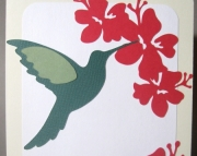 Hummingbird's Hibiscus Treat - Boxed Set of 10 Cards