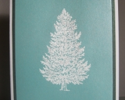 Frosty Pine Christmas Cards - Boxed Set of 10