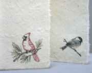 Cardinal & Chickadee Duo - Boxed Set of 10 Cards