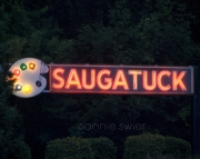 Welcome to Saugatuck
