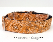 Martingale - Bandana Orange