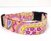 Dog Collar - TILLEY