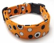 Dog Collar  LEO