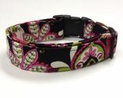 Dog Collar  Minya