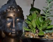Smokin Buddah