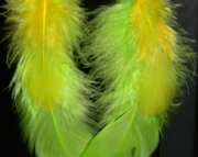 Green and yellow feather earrings