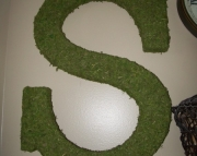 Moss Covered Letter - 23