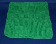 Green Dish Cloth