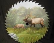 Elk on 9