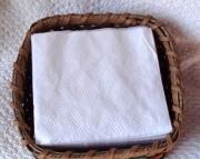 Napkin Apple Basket Handwoven