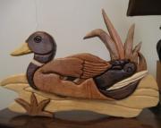 Intarsia Mallard Duck