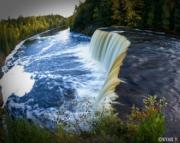 Fishy Falls