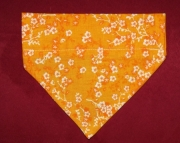 Orange Blossom Over the Collar Bandana-s