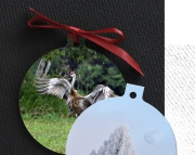 set of 2 Round 3 aluminum photo ornaments