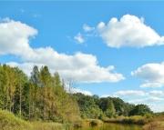 Creek in September