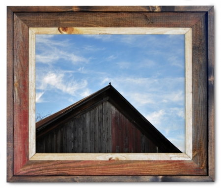 Canvas Print Barn Bird