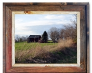 Canvas Print Barn Pine Tree