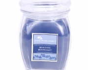 Manistee Moonlight - 18 oz Apothecary glass jar