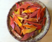 Stained Glass Shards for Mosaics