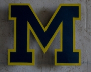 Michigan Wolverine Logo Wall Hanging